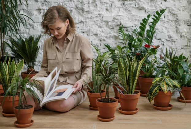 How Mental Health and General Mood Benefit from Horticultural Therapy